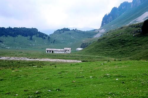 Transparco del parco nazionale dolomiti bellunesi for Grandi piani del ranch