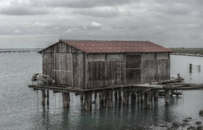 Porto Tolle Isola Della Donzella Colori Surreali Di Una