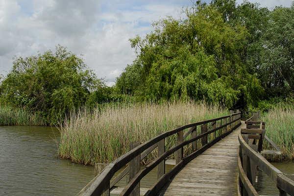 Marano Lagunare: Riserve Maturali della Foce del fiume