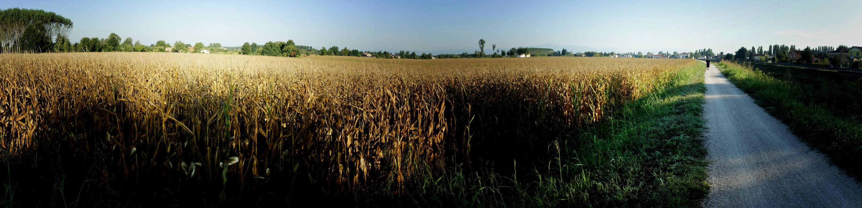 La campagna padovana lungo il fiume muson dei sassi nei for Sassi di fiume