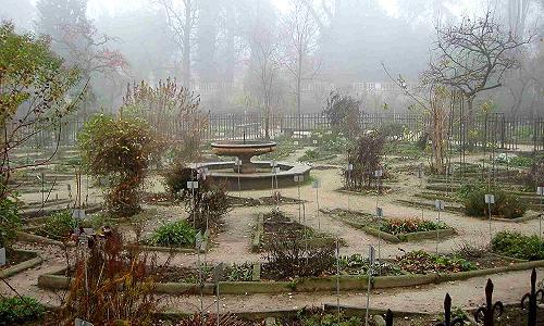 Padova orto botanico giardino botanico universitario sant