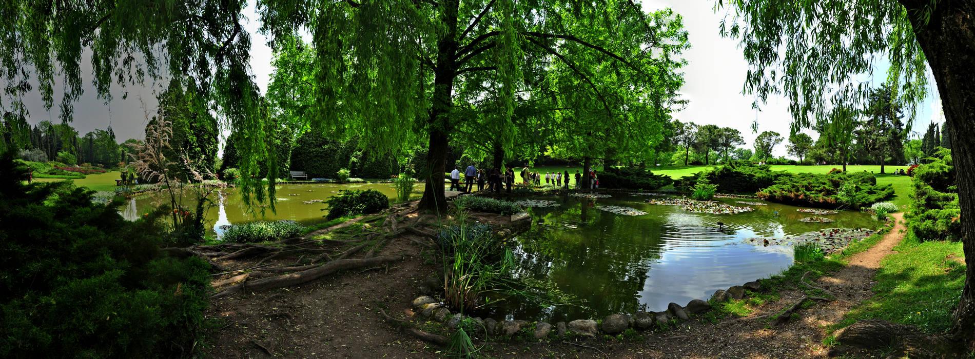 Valeggio sul mincio colline moreniche del garda parco giardino sigurt fotografia panoramica - Parco giardino sigurta valeggio sul mincio vr ...