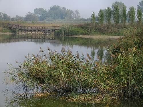 Codevigo, oasi naturalistica di Ca' di Mezzo lungo il fiume Bacchiglione