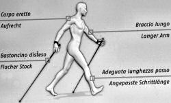 jogging, nordic walking