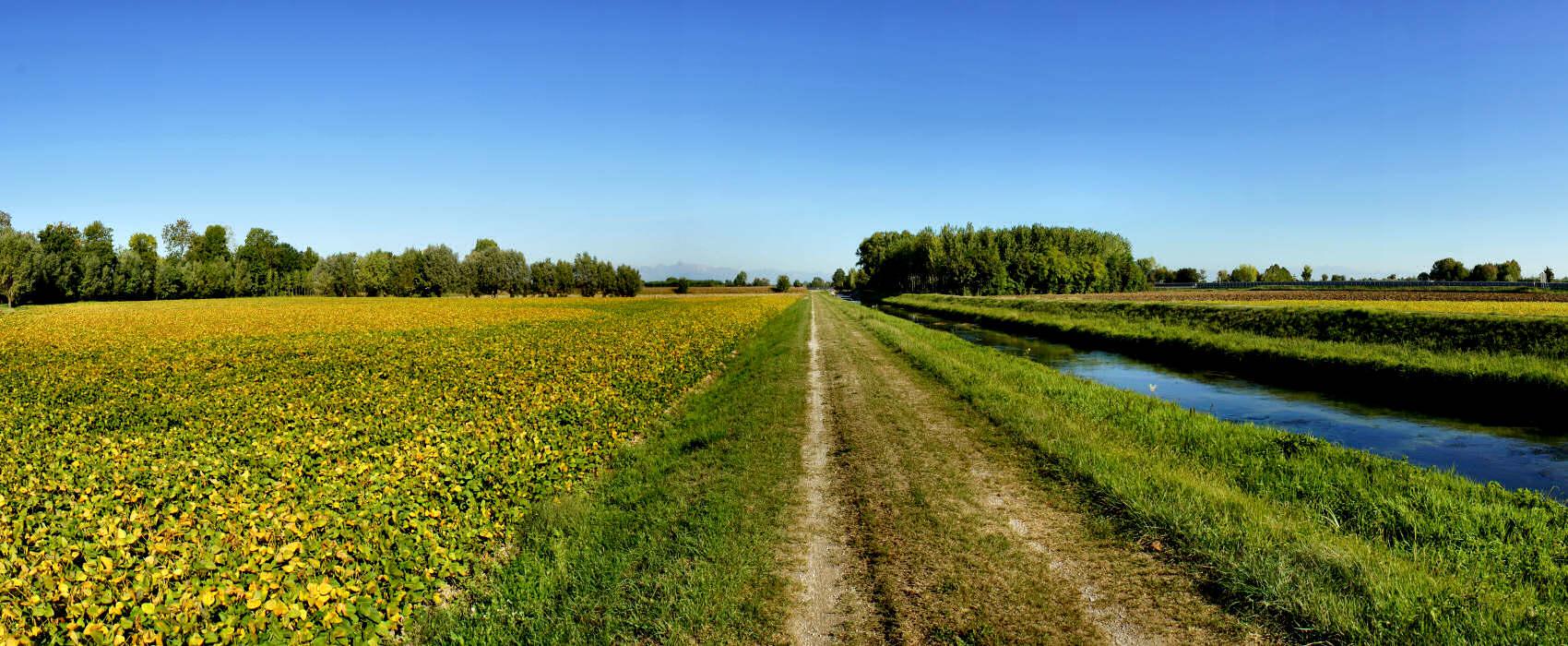 Portogruaro campagna lungo il fiume reghena fotografia for Disegni di cabina di campagna